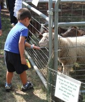Petting Zoo for Parties